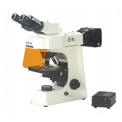 BS-2036F(LED) Fluorescent Biological Microscope