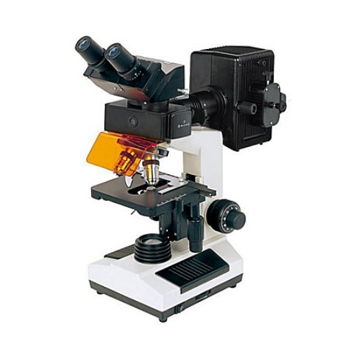 BS-2030F Fluorescent Biological Microscope