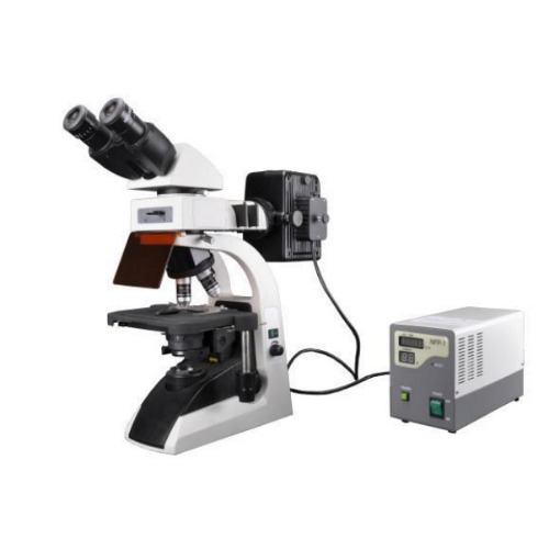 BS-2072F Fluorescent Biological Microscope